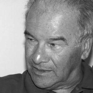 Giuseppe Averardi